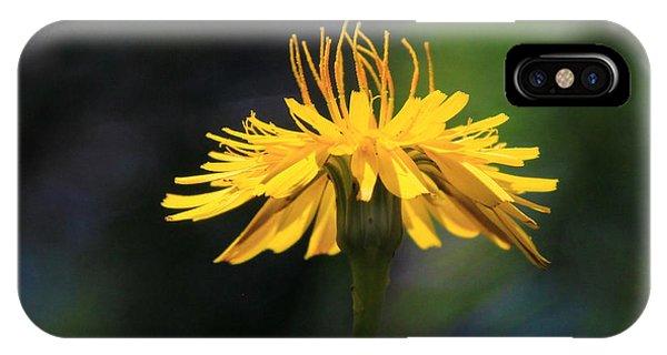 Dandelion Dance IPhone Case
