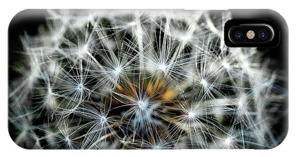 Dandelion Details IPhone Case
