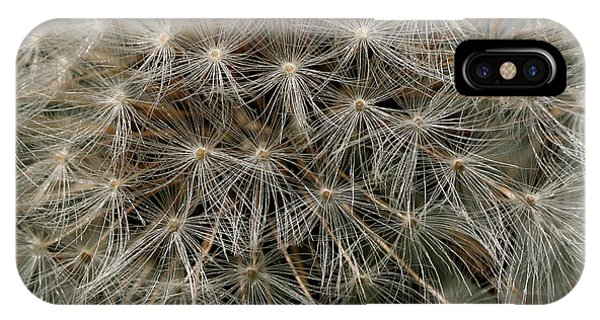 IPhone Case featuring the photograph Dandelion Head by William Selander