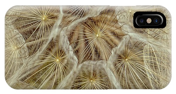 Dandelion Particles IPhone Case