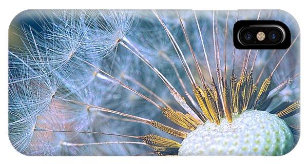 Dandelion Plumes IPhone Case