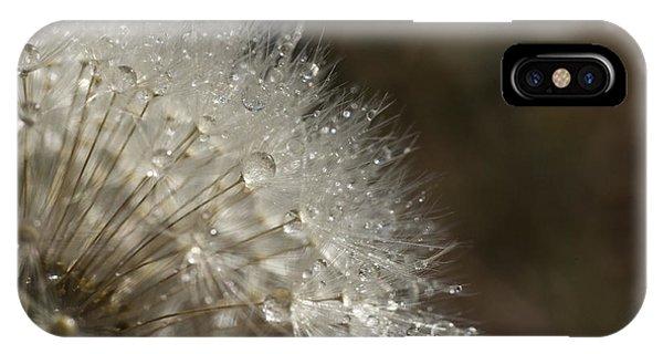 Dandelion Rain IPhone Case