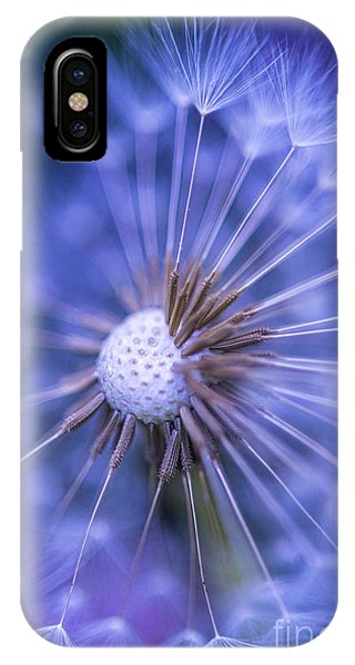 Dandelion Wish IPhone Case