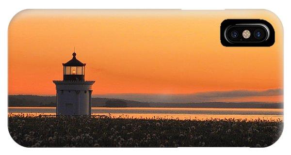 Dandelions At Sunrise IPhone Case