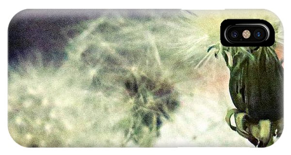 Simple iPhone Case - Dandelion Transitions by Leanne Seymour
