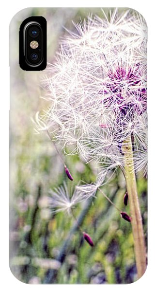Dandilion Wishes IPhone Case