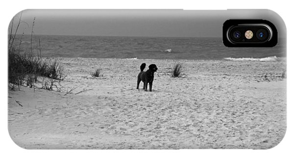 Dandy On The Beach IPhone Case