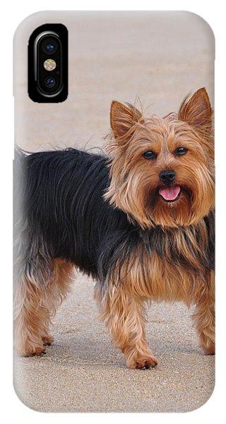 Dapper Dog IPhone Case