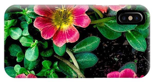 Dark Pink Purselane Flowers IPhone Case