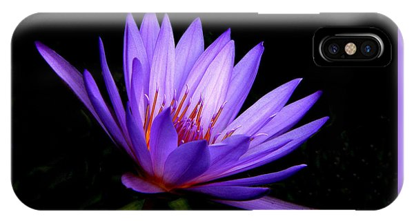 Dark Side Of The Purple Water Lily IPhone Case