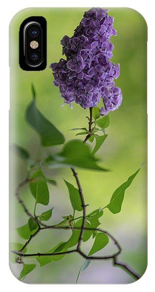 Dark Violet Lilac IPhone Case