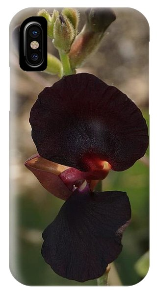IPhone Case featuring the photograph Darker Shade For Flowers by Cindy Charles Ouellette