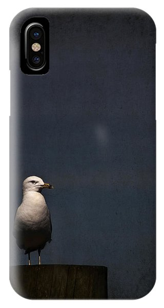 Seagull iPhone Case - Darkness Falls by Evelina Kremsdorf