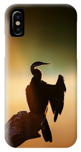 Anhinga iPhone Case - Darter Bird With Misty Sunrise by Johan Swanepoel