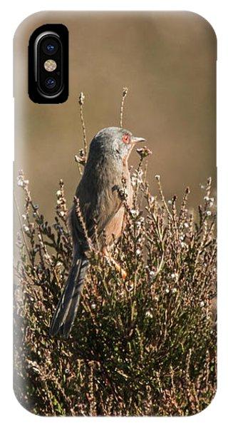 Dartford Warbler IPhone Case