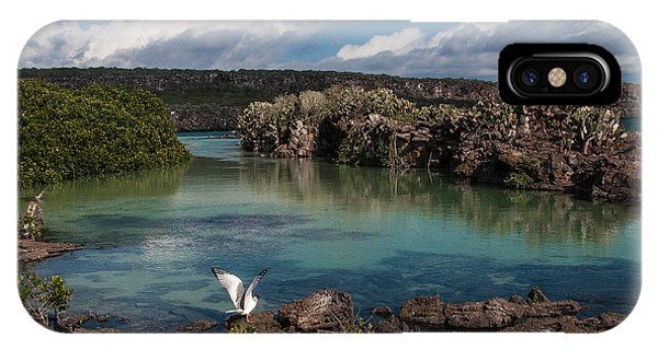 Darwin Bay     Genovesa Island      Galapagos Islands IPhone Case