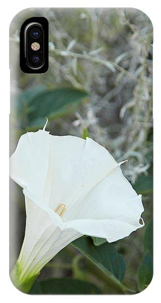 Datura IPhone Case