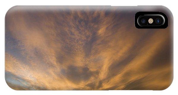 Dauphin Heavens IPhone Case