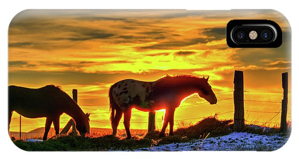 Dawn Horses IPhone Case