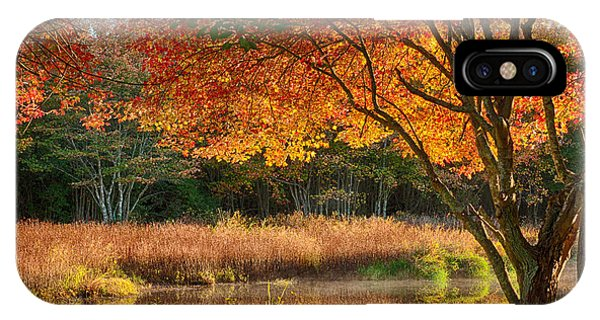 Dawn Lighting Rhode Island Fall Colors IPhone Case