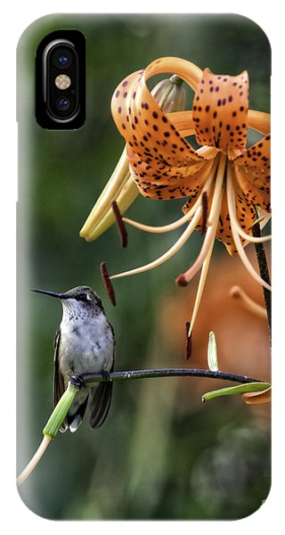 Day Hummer IPhone Case