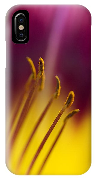 Daylily Abstract IPhone Case