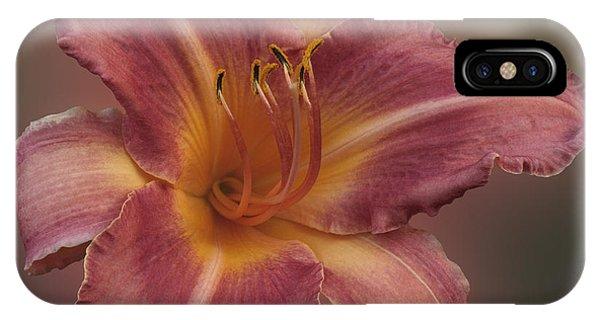 Daylily Blur IPhone Case