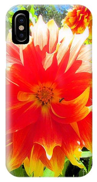 Dazzling Dahlia IPhone Case