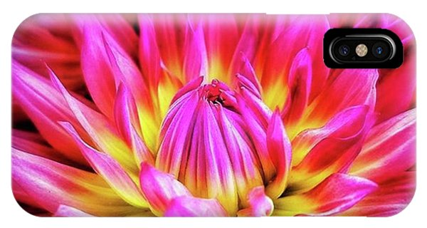 IPhone Case featuring the photograph Dazzling Dahlia. It Comes In So Many by Mr Photojimsf
