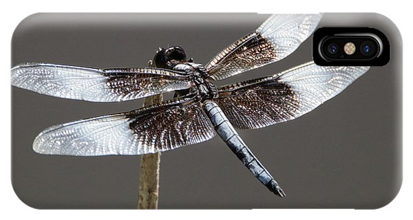 Dazzling Dragonfly IPhone Case