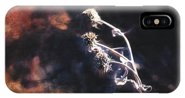 IPhone Case featuring the photograph Dead Heads by Anna Louise