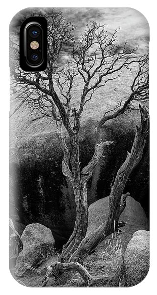 Dead Tree And Boulder At Joshua Tree IPhone Case