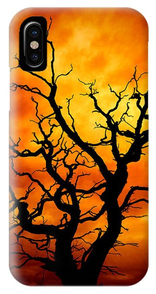 Imposing iPhone Case - Dead Tree by Meirion Matthias