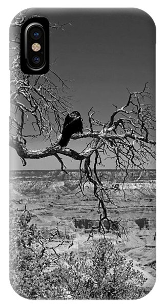 Dead Tree With Crow Phone Case by Michael Perlin