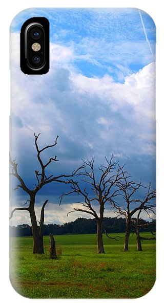 Dead Trees IPhone Case