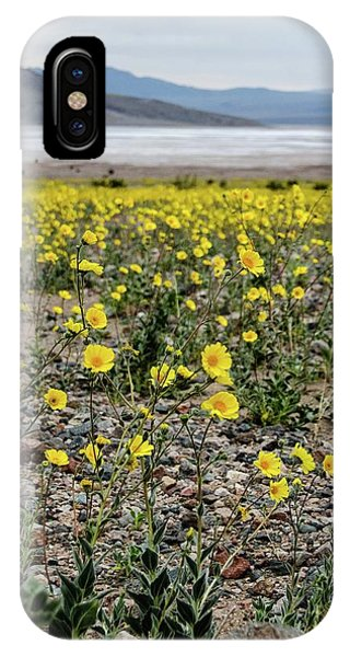 Death Valley Super Bloom IPhone Case