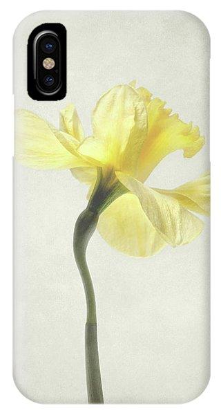 Decadent Daffodil IPhone Case