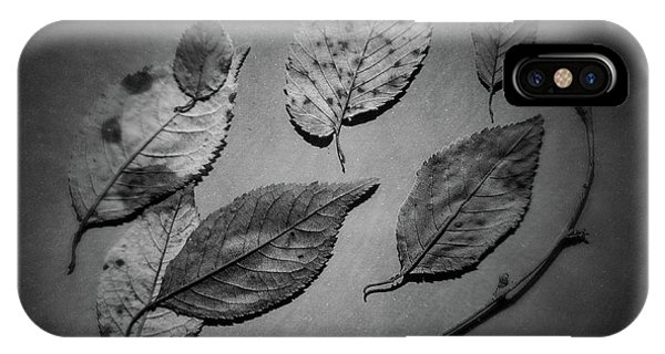 Twig iPhone Case - Decaying Leaves by Tom Mc Nemar