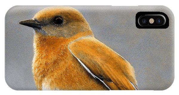 IPhone Case featuring the mixed media Decorative Bird Mixed Media E11817 by Mas Art Studio