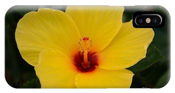 Decorative Floral Photo A9416 IPhone Case