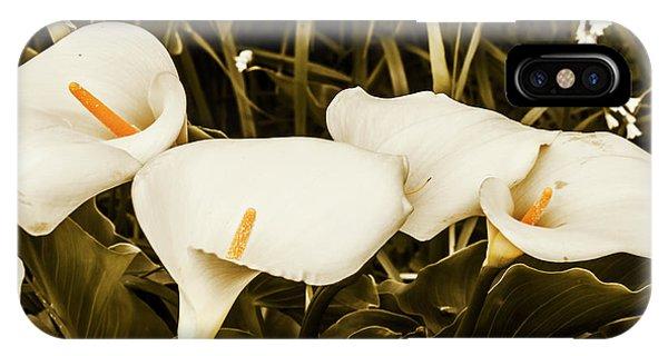 Garden Wall iPhone Case - Decorative Spring Garden by Jorgo Photography - Wall Art Gallery