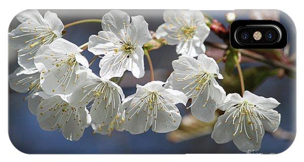 Deep Blue  Cherry Blossom IPhone Case