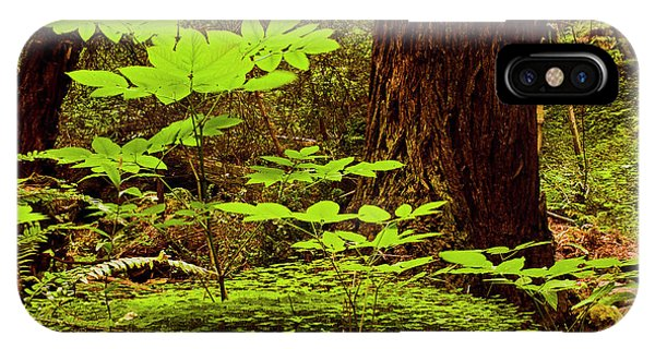 Deep In The Forest-lime Klin IPhone Case