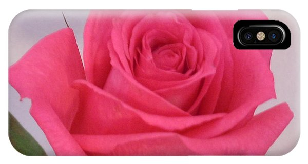 Single Deep Pink Rose IPhone Case