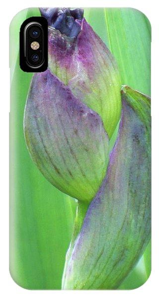Deep Purple Promise IPhone Case
