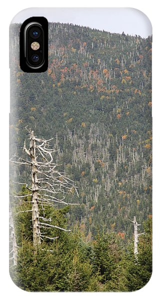 Deeper Into Forest IPhone Case