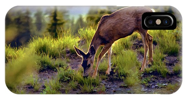 Deer At Crater Lake, Oregon IPhone Case