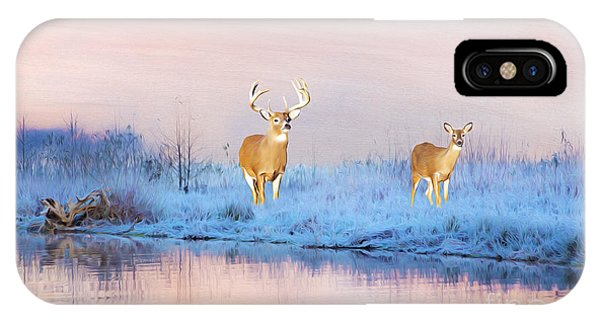 White Tailed Deer iPhone Case - Deer At Winter Pond by Laura D Young