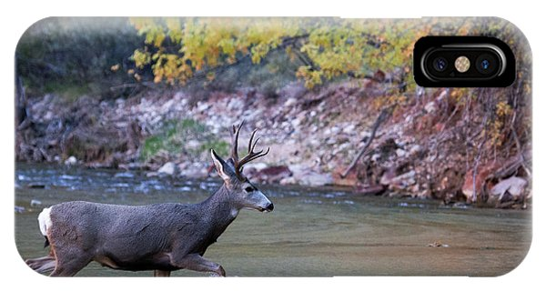 Deer Crossing River IPhone Case