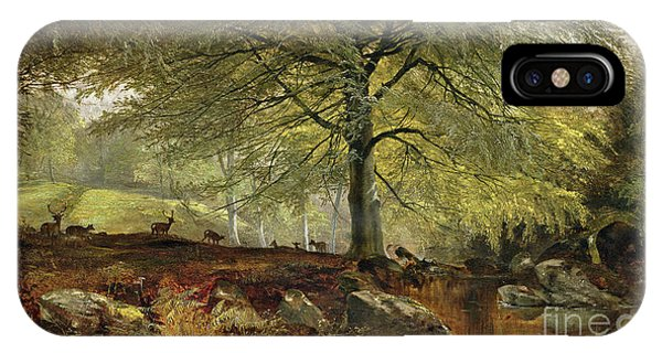 Stag iPhone Case - Deer In A Wood by Joseph Adam